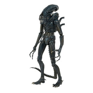 Alien-Warrior-1986---1-4-Figure