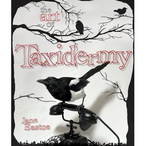 ART-OF-TAXIDERMY--THE