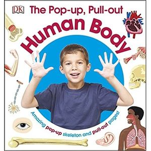 46397970-popup-pull-out-human-body