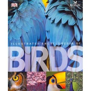29211582-illustrated-encyclopedia-of-birds-the
