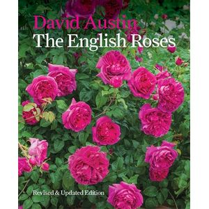 ENGLISH-ROSES-THE